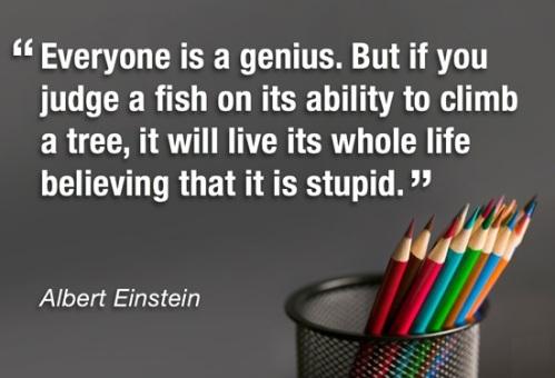 Einstein-Genius-Quote